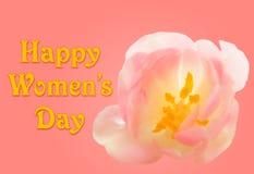 Lycklig kvinnors dagbakgrund med tulpanblomningen Royaltyfria Foton