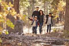 Lycklig latinamerikansk familj med två barn som går i en skog arkivbild