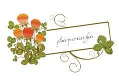 lycklig leaf för växt av släkten Trifolium fyra Arkivbild