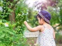 Lycklig liten gullig flicka i lantgården Lantbruk- & barnbegrepp arkivbild