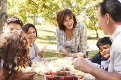 Lycklig mång- utvecklingsfamilj som har en picknick i en parkera royaltyfri foto