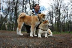 Lycklig man med två hundkapplöpning Royaltyfria Bilder