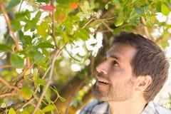 Lycklig man som ler på trädet Arkivfoton