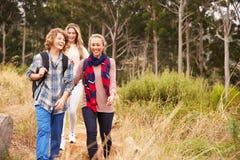 Lycklig moder och två ungar som går i en skog royaltyfri fotografi
