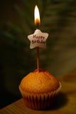 lycklig muffin för födelsedag Royaltyfri Foto