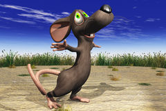lycklig mus utanför Arkivbilder