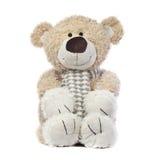 lycklig nalle för björn Royaltyfria Bilder