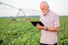 Lycklig och tillfredsst?lld h?g agronom eller bonde som anv?nder en minnestavla i sojab?naf?lt royaltyfri foto