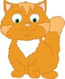 Lycklig orange katt Arkivbild
