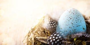 Lycklig påskdag för konst; Påskägg och fågelfjäder Royaltyfria Bilder