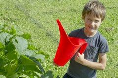 Lycklig pojke som bevattnar grönsaker i trädgården Grön gräsbakgrund Royaltyfri Foto