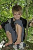 Lycklig pojke som spelar på ett träd Fotografering för Bildbyråer