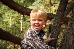 Lycklig pojkeklättring i en tree fotografering för bildbyråer