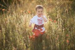 lycklig pys i ukrainska kläder royaltyfri bild
