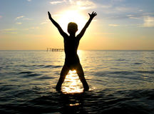 lycklig silhouette för pojke Royaltyfria Bilder