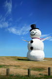 lycklig snowman Royaltyfria Bilder
