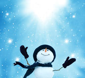 lycklig snowman royaltyfri foto