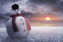 lycklig snowmanvinter Royaltyfri Foto
