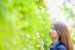 Lycklig ståendeasia ung kvinna och leende på den Doi tung trädgården, Dh Arkivbild