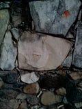 Lycklig sten Arkivbild