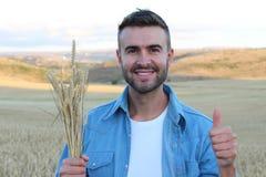 Lycklig stilig bonde som gör en gest i fältet som är klart att skörda att ge upp en tumme fotografering för bildbyråer