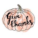 lycklig tacksägelse för dag kortdaghälsningen irises vektorn för moder s handskrift Royaltyfria Bilder