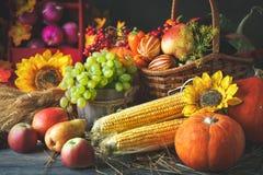 Lycklig tacksägelsedagbakgrund, trätabell som dekoreras med pumpor, majs, frukter och höstsidor Skörd royaltyfria foton
