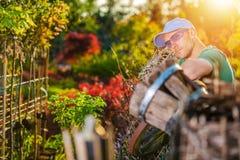 Lycklig trädgårdsmästare och hans trädgård arkivfoto