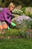 lycklig trädgårdsmästare Fotografering för Bildbyråer