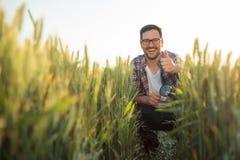 Lycklig ung bonde som huka sig ned i ett vetefält som kontrollerar växtutveckling arkivbild