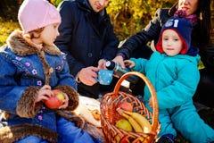 Lycklig ung familj av fyra som har picknicken på ängen på sommardagen arkivfoton
