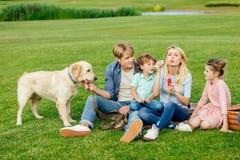 lycklig ung familj som blåser såpbubblor, medan vila med hunden arkivbild