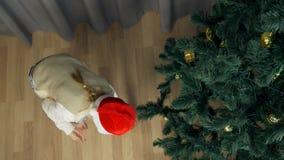 Lycklig ung flicka i röda den lycklig jultomtenhatten som är rolig och Vit flicka som dekorerar julträdet Guld- bollnedgång som s arkivfilmer