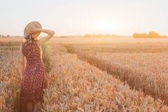 Lycklig ung kvinna i vetefält vid solnedgången, dagdröm royaltyfri fotografi