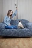 Ung kvinna som leker med katten royaltyfri bild