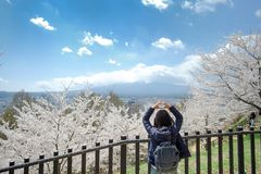 Lycklig ung kvinna som reser med h?rliga rosa Cherry Blossom och Mount Fuji p? omr?de f?r Chureito r?tt pagodtempel V?rs?song p? arkivfoton