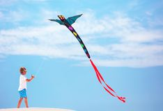 Lycklig unge, pojke som flyger en drake i sommarhimlen Royaltyfria Bilder