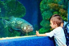 Lycklig unge som meddelar med fisken i oceanarium Royaltyfri Foto
