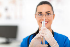 Veterinär- hållande injektionsspruta Arkivbilder