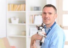 Lycklig veterinär med katten Royaltyfri Fotografi