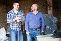 Lyckliga bönder som arbetar i ladugård Arkivfoto
