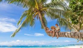 Lyckliga barn - pojken och flickor - på palmträdet som är tropisk Royaltyfri Bild