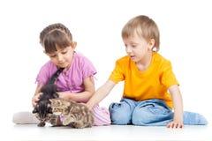 Lyckliga barn som spelar med kattungen Arkivbilder