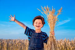 Lyckliga bondes pojke på vetefält Arkivbilder