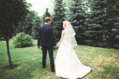 Lyckliga brölloppar som går i ett botaniskt, parkerar Arkivfoton