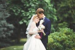 Lyckliga brölloppar som går i ett botaniskt, parkerar fotografering för bildbyråer