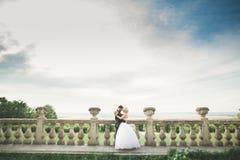 Lyckliga brölloppar som kramar och kysser på gammal slott för bakgrund Royaltyfri Fotografi