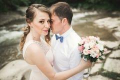 Lyckliga brölloppar som kramar och ler sig på bakgrundssjön, skog Arkivfoton