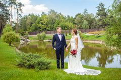 Lyckliga brudgum- och brudinnehavhänder, medan stå på gröna gras arkivfoto