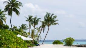 Lyckliga dagar i Maldive Royaltyfria Bilder